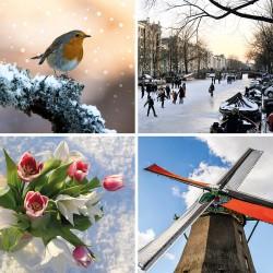 Kerstkaart nederland