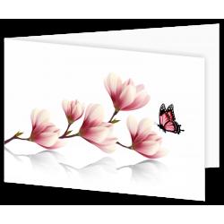 Dankbetuiging magnolia