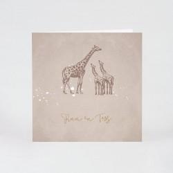 Geboortekaartje 2 girafjes